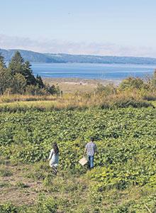 Le Saguenay–Lac-Saint-Jean veut se différentier par ses aliments issus de son agriculture nordique. Photo : Zone boréale/Sophie Gagnon-Bergeron