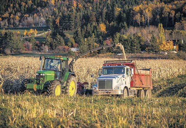 Pier-Luc Viel au volant du tracteur et Daniel Brillant dans son 10roues transportant le maïs. Photos: Béatrice Foord Saint-Laurent