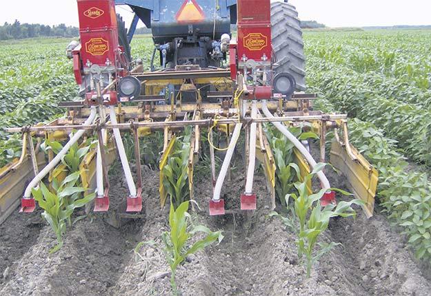Façonnage de billons de maïs (entre billons de soya), avec écrans de protection et semis d'engrais vert intercalaire pour la saison prochaine. Photo : Gracieuseté du Club Action Billon