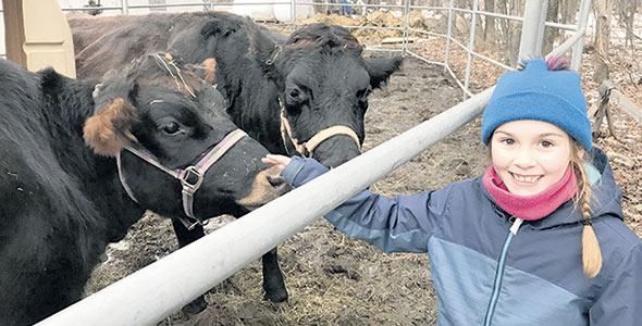 Abby Demers, neuf ans, dit qu'elle saura désormais reconnaître les vaches Canadiennes.