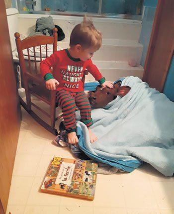 Âgé de trois ans à l'époque, James a veillé sur Magique pendant toute la journée en lui racontant des histoires. Photo : Gracieuseté de la famille Scobble