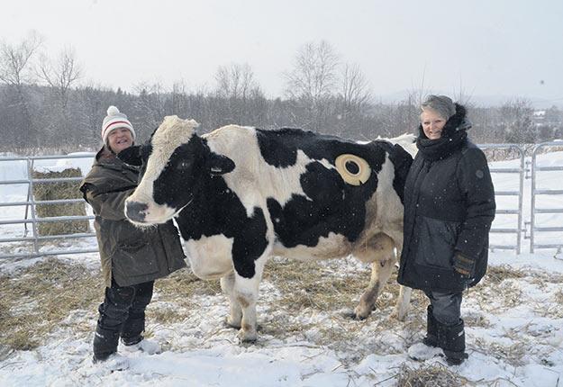 Chantal Héroux et Raymonde Cossette avec leur plus célèbre pensionnaire, Maggie. Photo : Bernard Lepage