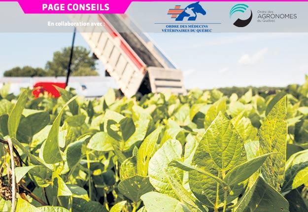 Le recyclage agricole des matières résiduelles fertilisantes issues de municipalités ou de l'industrie peut s'avérer bénéfique, s'il est bien encadré. Photo : Gracieuseté de Viridis Environnement