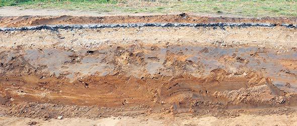 «Cette technique a tout de suite apporté de grandes améliorations, notamment dans nos sols argileux qui se drainent et se réchauffent difficilement au printemps. » - Thomas Dewavrin