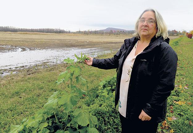 Élizabeth Ménard porte le projet Agriculture urbaine Saint-Bruno visant à développer une nouvelle forme de ferme, urbaine et carboneutre. Photo : Agathe Beaudouin