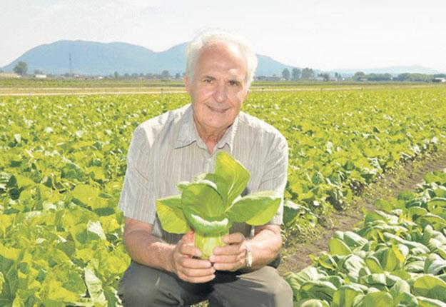 Gérard Trudeau, président des Fermes Trudeau, à Saint-Mathieu-de-Beloeil. Photo : Gracieuseté de Gérard Trudeau