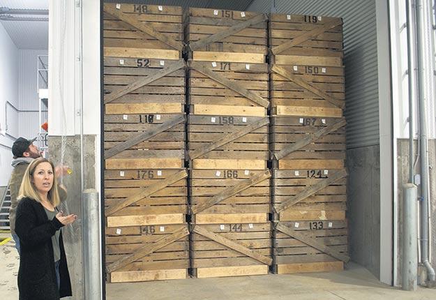 Sophie Massie explique que chacune des quatre chambres d'entreposage peut accueillir jusqu'à 90 boîtes contenant mille livres de pommes de terre chacune, et que la capacité totale serait doublée si les tubercules étaient en vrac. Photos : Dominique Wolfshagen