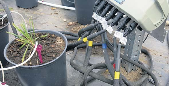 Des tensiomètres sans fil combinés à un système automatisé avec pic d'irrigation permettent d'arroser au bon endroit au bon moment.