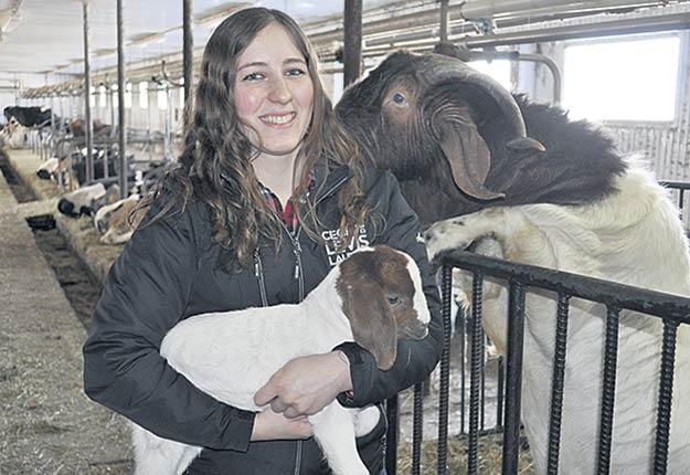 Pour Anne-Sophie Paquet, l'annonce de la hausse prochaine du prix de la viande en épicerie explique en partie le succès que connaît la Ferme Syldia. Photo : Johanne Martin/TCN