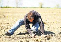 Le sol est friable lorsqu'il est impossible de former des mottes avec les mains. Photos: Archives/TCN