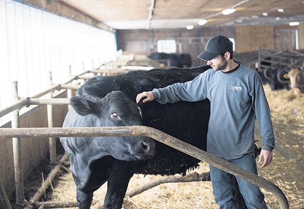 L'accès aux subventions pour le démarrage d'entreprise chez les jeunes agriculteurs a été au cœur des discussions lors de l'assemblée générale annuelle de la Fédération de la relève agricole du Québec. Photo : Archives / TCN