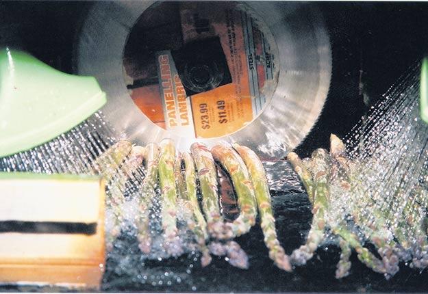 Selon ce que prévoit un nouveau projet de règlement environnemental, les fermes cultivant plus de 5ha devront épurer leurs eaux de lavage de légumes à une concentration de 50mg/L et moins. Photo : Archives / TCN