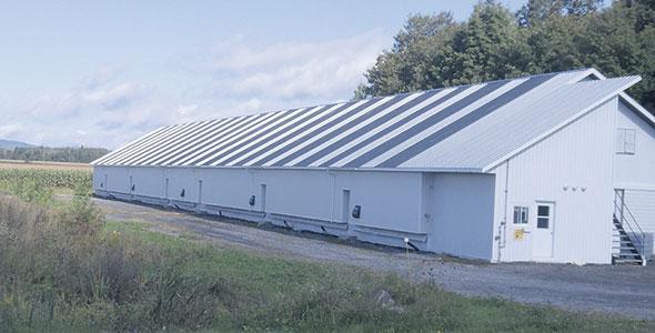 Cinq récupérateurs ont été installés sur toute la longueur du poulailler de 260 pieds afin de bien équilibrer la ventilation de base et assurer une homogénéité de l'air à l'intérieur.