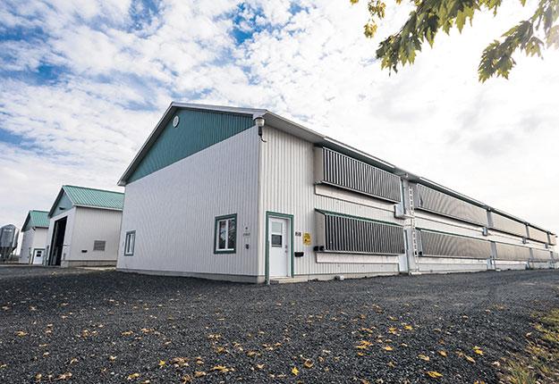 Les fermes Pierre Bélanger ont construit un nouveau poulailler en 2018. Celui-ci est doté d'un nouveau système de tunnel ventilation, de sondes et détecteurs d'humidité et de gaz carbonique et d'un éclairage à diodes électroluminescentes (DEL). Photo : Gracieuseté Les Éleveurs de volailles du Québec