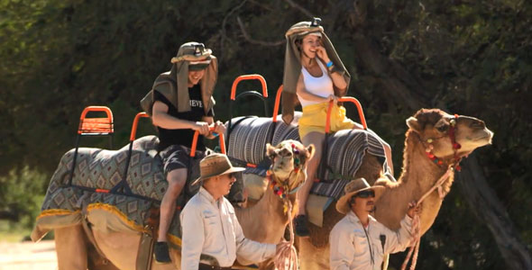 Dans la catégorie activités inusitée, un tour de chameaux pour Jayson et Audrey-Ann. Ça change d'une promenade à cheval!