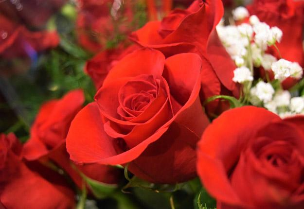 Malgré la pandémie, les consommateurs sont demeurés fidèles à la tradition d'acheter des fleurs pour leur mère en fin de semaine. Photo : David Riendeau / TCN