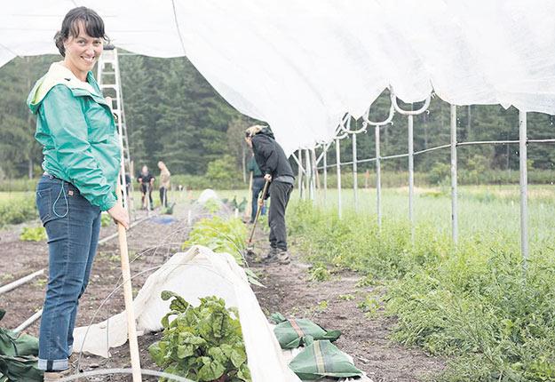 La production biologique occupe une grande place dans la plupart des programmes de formation au campus de La Pocatière. Photo : Éric Labonté, MAPAQ