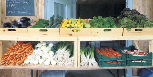 Les paniers biologiques distribués par la famille nourrissent  quelque 200 foyers des alentours de Plessisville, de Victoriaville et de Thetford Mines.