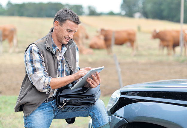 Une technologie qui a suscité une grande attention ce printemps est l'application téléphonique capable de dire si une vache ou une taure est en train de vêler. Photo : Shutterstock