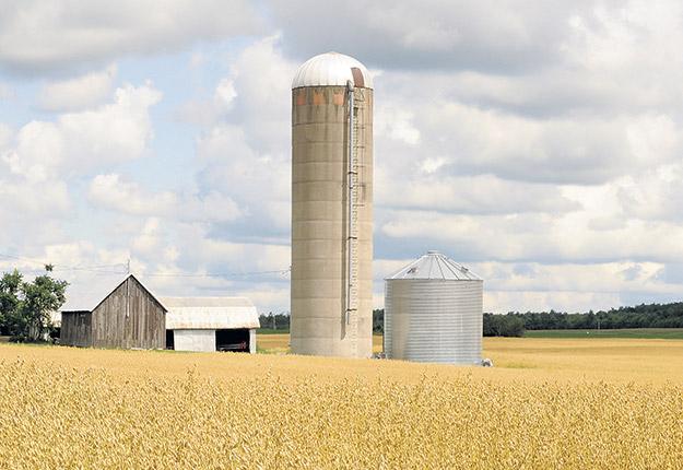 Habituellement déposées sur des fondations en ciment, ces structures cylindriques de 15 à 30 mètres de hauteur, souvent fermées par un toit en dôme, servent à la fermentation des fourrages ou encore à l'entreposage des grains. Photo : Archives/TCN