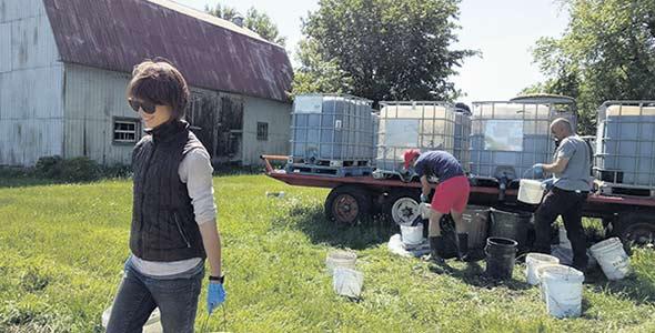 Les recherches ont été menées sur deux sites, à Sainte-Anne-de-Bellevue et à Laval.