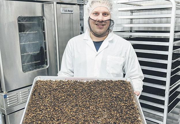 Charles Ouellet-Bernier dans la salle de transformation alimentaire d'Entomo DSP. Photos: Gracieuseté d'Entomo DSP