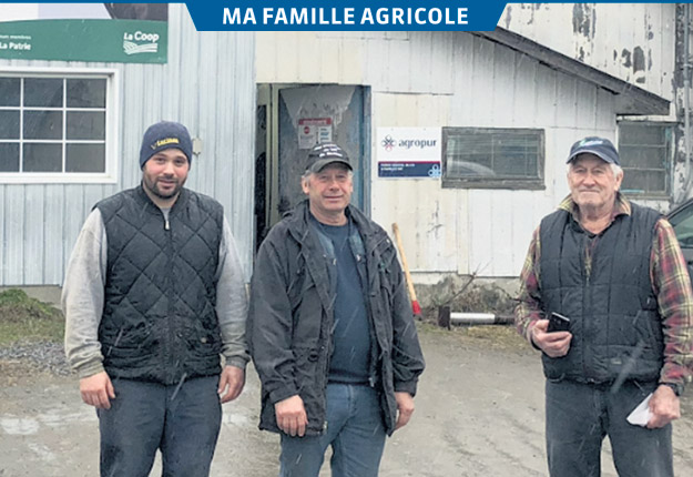 Depuis 30 ans, Marius (à droite) puis Marcel (au centre) et Francis Blais (à gauche) s'occupent du même troupeau laitier à leur ferme de La Patrie. Photos: Gracieuseté de la famille Blais