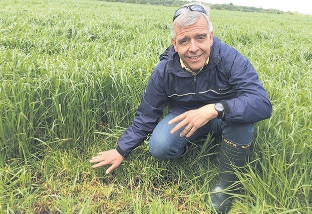 Selon l'agronome Robert Berthiaume, la résilience d'une prairie est aussi importante que sa productivité. Photo : Gracieuseté