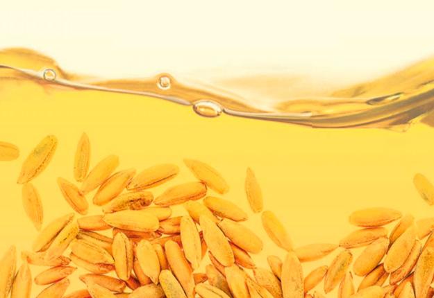 Plus d'une douzaine de microdistilleries font l'effort d'acheter du grain québécois pour confectionner leurs spiritueux.