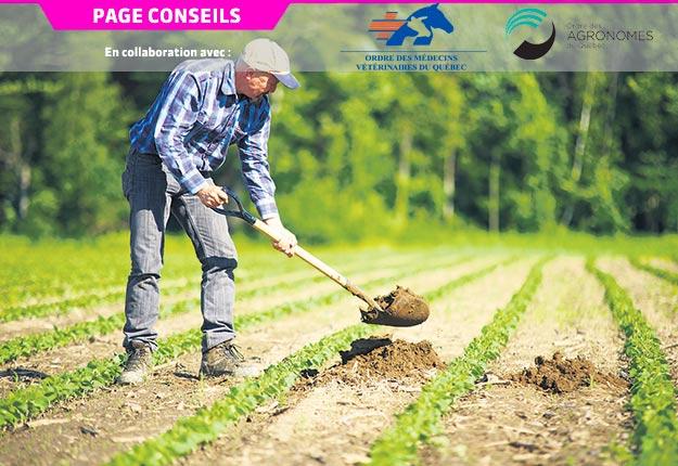 Les agriculteurs peuvent mettre en place plusieurs actions pour surmonter une crise comme celle de la COVID-19. Photo : Archives/TCN