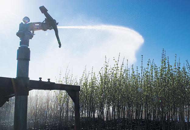 La Fédération de l'UPA d'Abitibi-Témiscamingue est celle qui, pour l'instant, reçoit un moins grand nombre d'appels de producteurs inquiets du manque d'eau. Photo : Archives TCN/ Martin Ménard