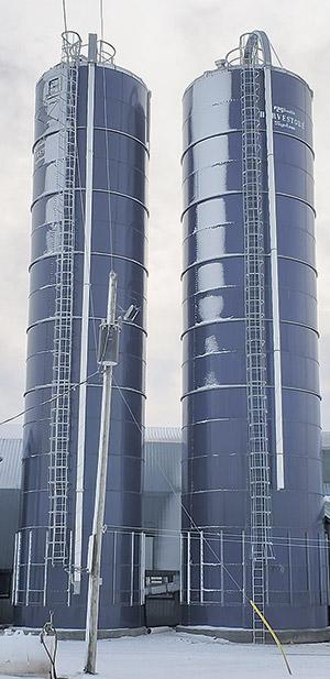 Deux silos bleus compagnons avec échelle à crinoline et tuyau de remplissage pour l'alimentation des vaches laitières.