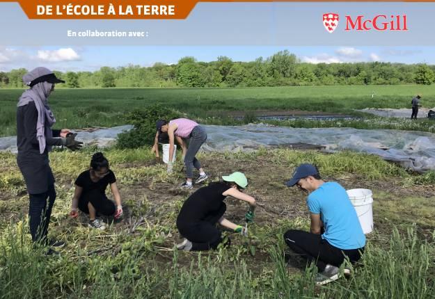 Les étudiants en stage de diététique aident au démarrage des cultures au Macdonald Student-run Ecological Gardens pour apprendre les rudiments de l'agriculture. Photo : Gracieuseté de Mary Hendrickson