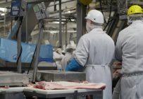 La Santé publique va effectuer dans les prochaines semaines des dépistages dans les lieux où il y a déjà eu des éclosions comme les abattoirs. Archives/TCN