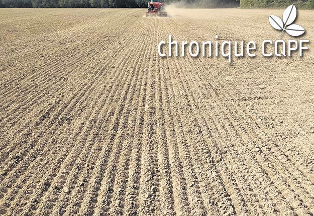 Le mois d'août n'est pas surchargé par les travaux aux champs, ce qui permet de planifier l'application de chaux et d'éléments nutritifs selon l'analyse de sol et de maximiser les chances de faire un semis de qualité. Photo : Gracieuseté