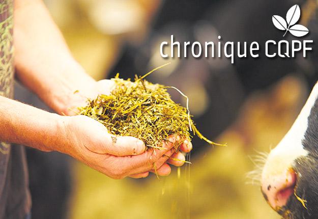 Les pratiques de récolte peuvent avoir un impact sur la qualité des fourrages et sur les résultats d'analyse. Photo : Martin Ménard/Archives TCN