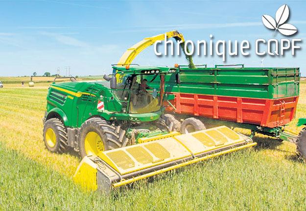 Les petites céréales nécessitent une gestion différente pour obtenir un ensilage de qualité optimale. Photo : Gracieuseté du CQPF