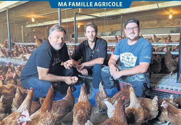 Aux Saveurs des Monts, spécialisée dans l'élevage de volailles, a diversifié son offre récemment. Élie, Sylvain et Samuel Bertrand vivent cette année leur quatrième saison des fraises.