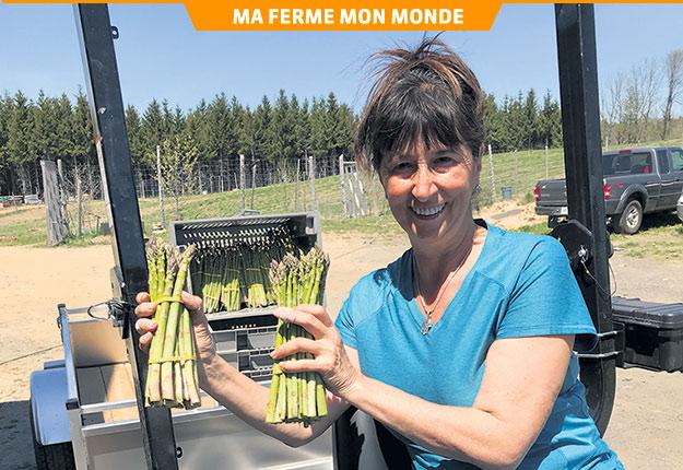 Grâce au centre d'emploi agricole, Lyne Roberge a recruté pour sa récolte d'asperges plusieurs candidats qui étaient des universitaires de domaines liés à la nature, comme la biologie ou la faune. Photo : Gracieuseté de Lyne Roberge