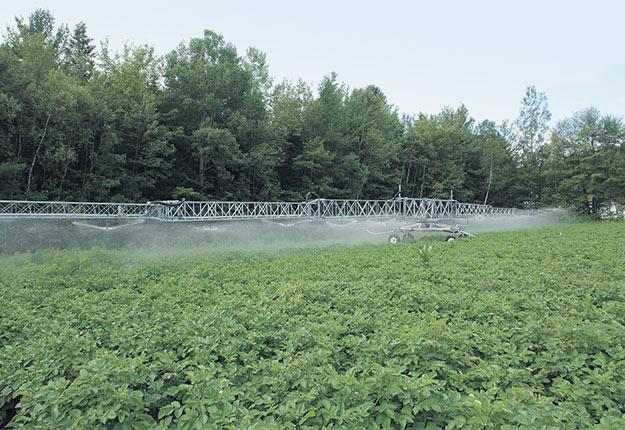 La sécheresse a entraîné une forte hausse des ventes des équipements d'irrigation cette année. Photo : Gracieuseté de Harnois Irrigation