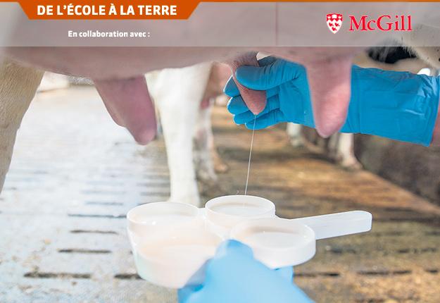 Selon Saji George, la nanotechnologie permet une approche plus ciblée pour traiter les infections à la ferme. Photo : Pixabay