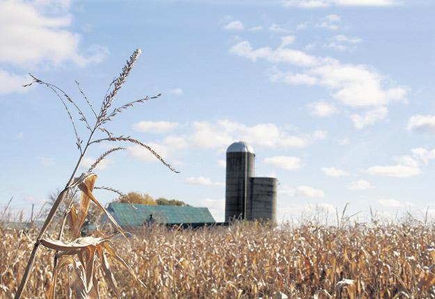 Vous trouverez sur Agri-Réseau une page consacrée au transfert d'entreprises avec des capsules de conférences, des outils et des événements. Photo : Archives/TCN
