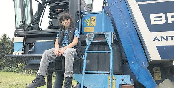 Du haut de ses sept ans, Katrina est toujours heureuse quand la récolteuse est en fonction au vignoble.