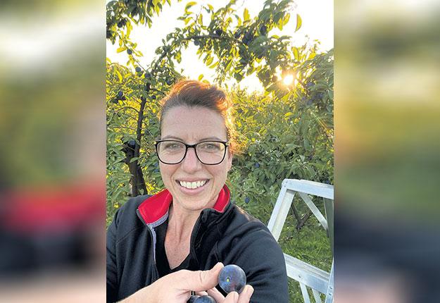 Les pruniers d'Isabelle Paquette se sont vidés en une fin de semaine. Photo : Gracieuseté du Verger Kessler