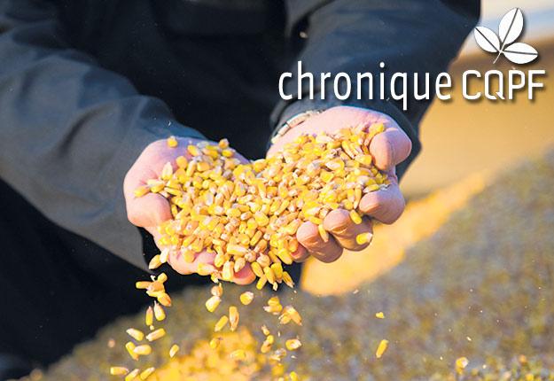 Des interventions avant et pendant le stockage peuvent contribuer à réduire les dommages causés aux grains par les moisissures et les insectes. Photo : Archives/TCN