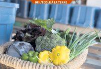 L'agriculture de proximité favorise un rapprochement entre les consommateurs et les producteurs agricoles et elle réduit la distance que parcourent les aliments. Photo : Gracieuseté d'Éric Labonté, MAPAQ