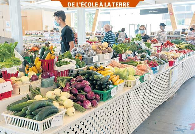 La mise en marché des produits locaux est souvent associée aux marchés publics et aux kiosques à la ferme, mais il existe d'autres formules. Photo : Gracieuseté de Éric Labonté, MAPAQ