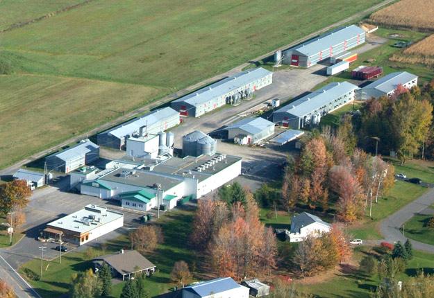La santé publique a recensé une éclosion de 32 cas de COVID-19 à l'usine de transformation de la Ferme des Voltigeurs de Drummondville. Aucun cas n'a toutefois été recensé à la ferme. Crédit : Archives/TCN