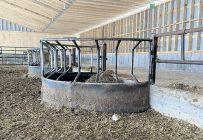 Samuel Paradis croit que sa ferme est l'une des premières au Québec à avoir une mangeoire couverte dans un enclos d'hivernage. Photo : Nathalie Côté