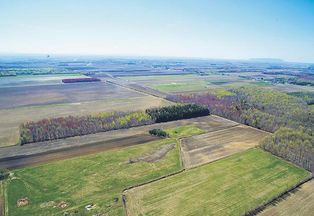 La valeur des terres agricoles a augmenté en moyenne de 2,6 % au Québec et de 3,7 % au Canada dans les six premiers mois de 2020. Photo : Archives/TCN